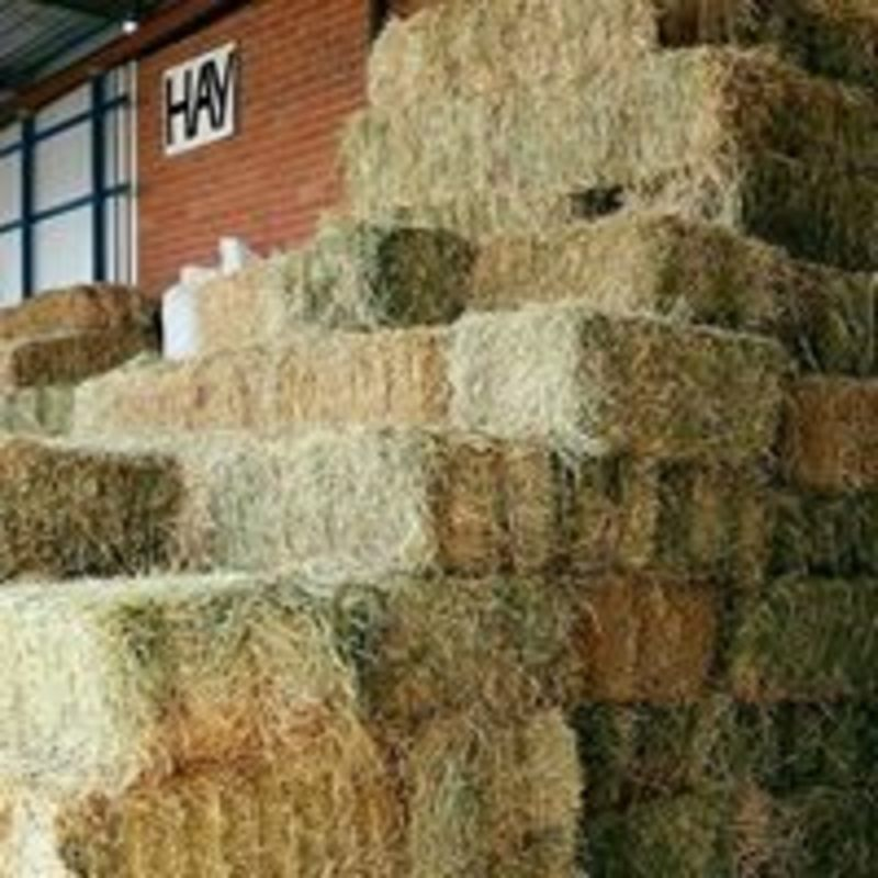 Stock Feed & Farm Supplies - PRICE REDUCTION