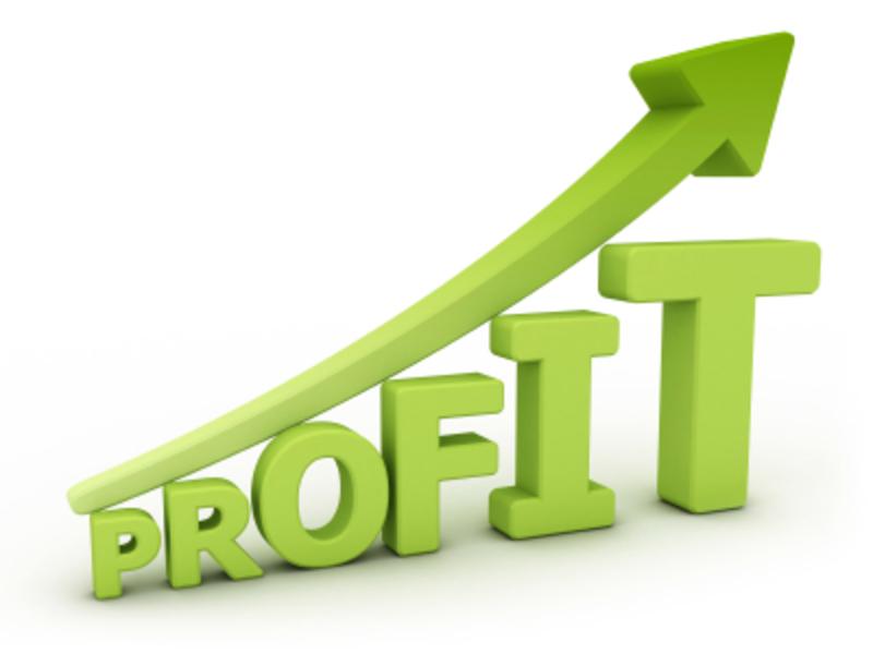 Highly profitable lifestyle business Sunshine Coast