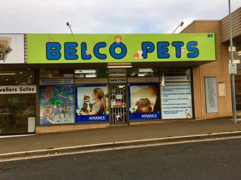 Highly Profitable Independent Pet Store!