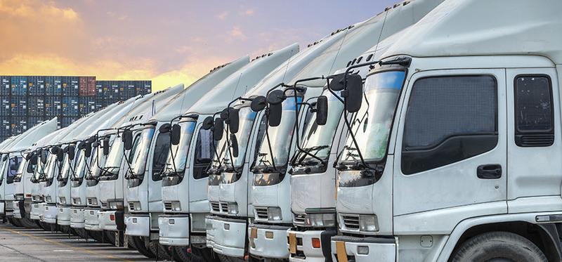 WELL ESTABLISHED TRANSPORT AND LOGISTICS COMPANY - Storage & Transport