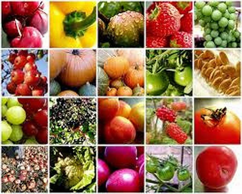 Ref: 2226, Fruit Shop, West