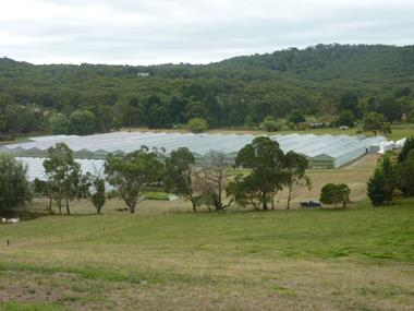 Significant Agriculture Business Near City of Melbourne (GJ155)