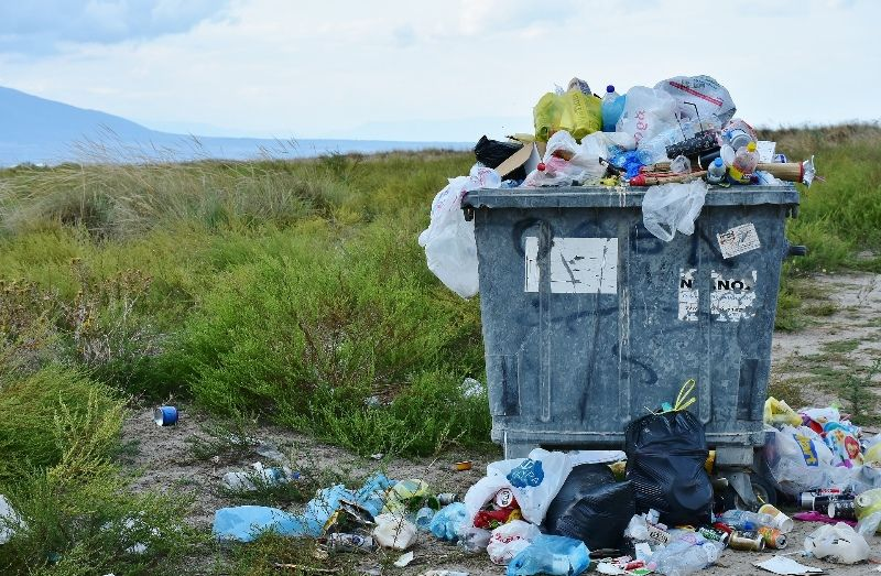 Waste Management - Contract with regional council guaranteed $$$ (NS1808)