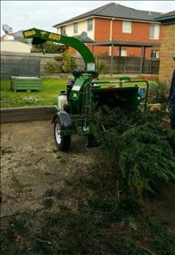 Tree &Garden Service (102R)