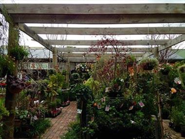 Cafe & Garden Centre 'Coburg' Call Mino 0414 886 364 (Ref 5236)