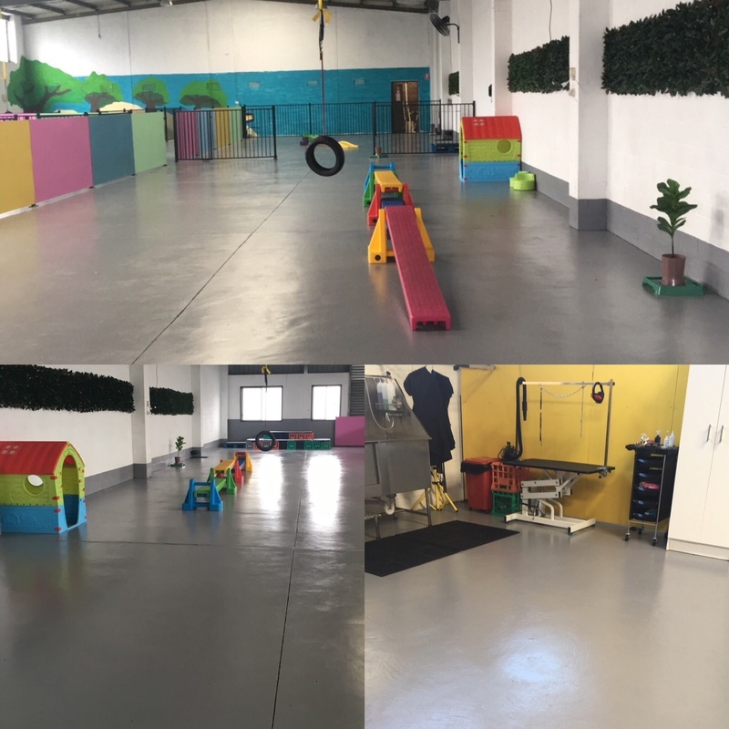 Doggy Day Care 'North Suburbs' Call Mim 0488 036 190 (Ref 5528)