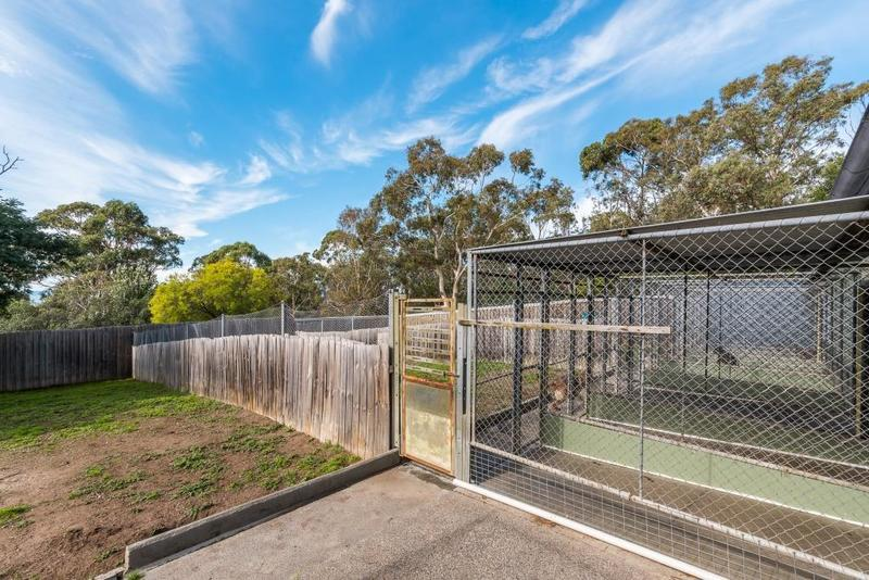acton-park-best-friends-pet-resort-lifestyle-property-with-income-stream-our-5