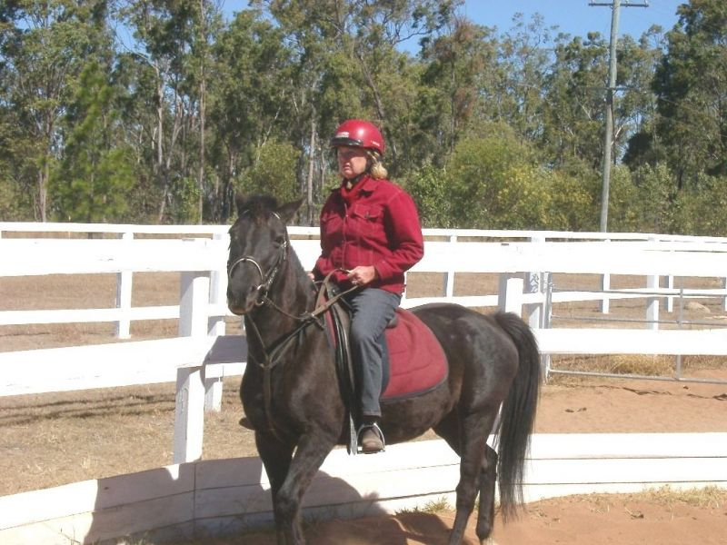 lockyer-valley-horse-riding-farmstay-prop-freehold-with-excellent-infrastructure-6