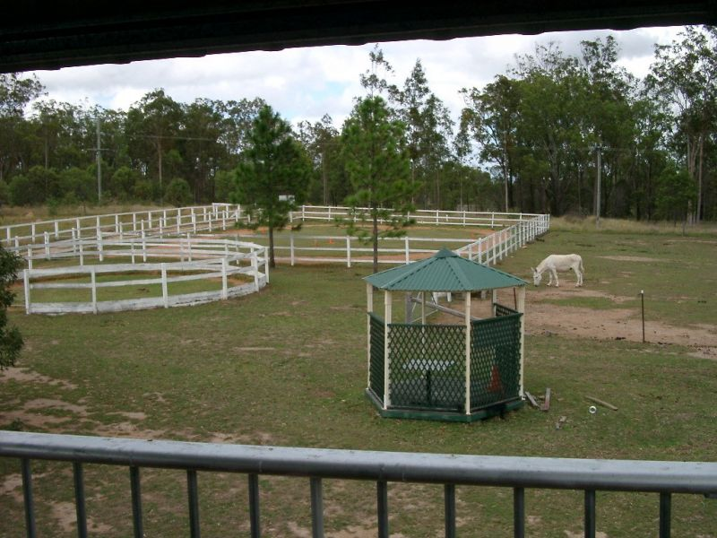 lockyer-valley-horse-riding-farmstay-prop-freehold-with-excellent-infrastructure-2