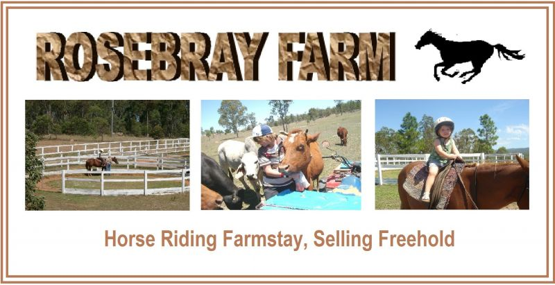 LOCKYER VALLEY HORSE RIDING FARMSTAY PROP FREEHOLD WITH EXCELLENT INFRASTRUCTURE