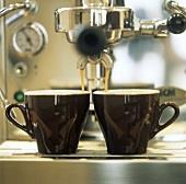 Espresso Bar North Shore REF:AF772