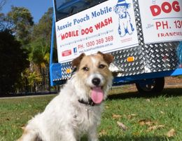 Dog Lovers - Aussie Pooch Franchise Birthday Special from $10,500 up front!