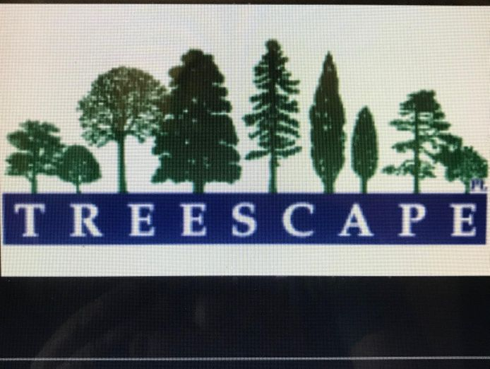 professional-tree-services-business-for-sale-est-35-years-6