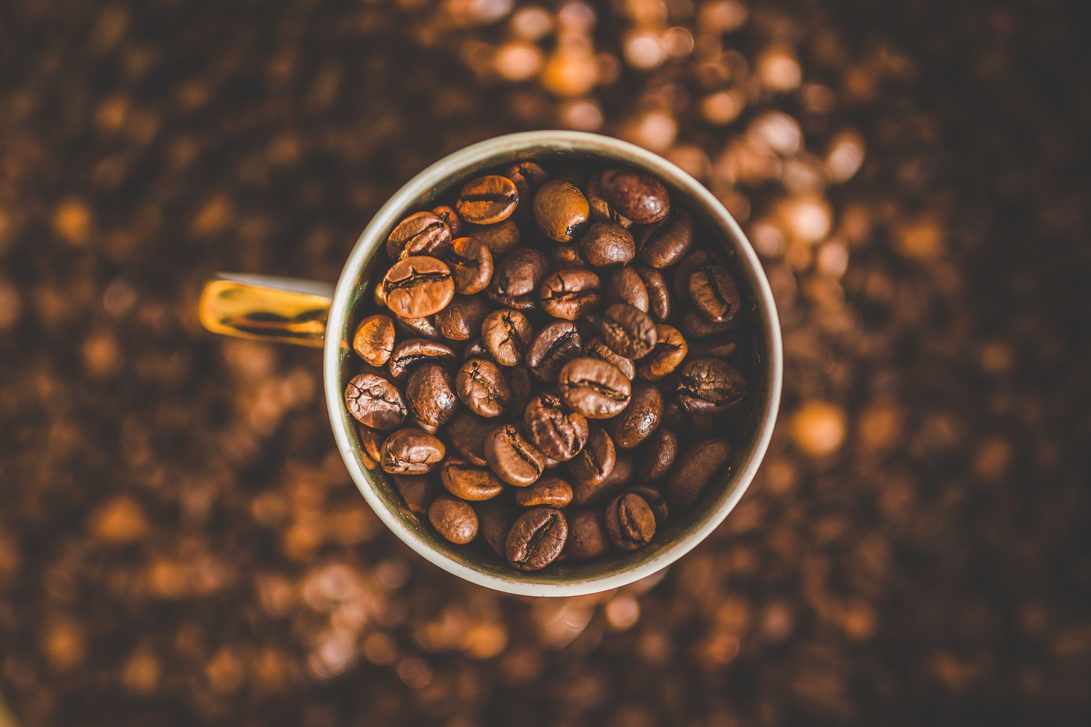 Popular Cafe / Coffee Shop | Greenslopes