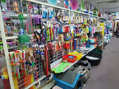 discount-variety-store-by-the-sea-1