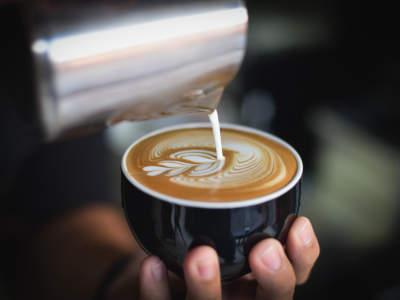 premium-cafe-franchise-existing-opportunity-sydneys-west-2