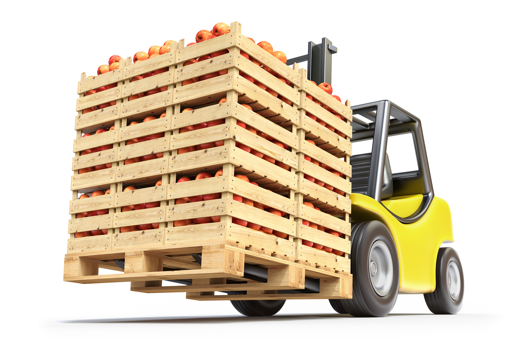 Major Fruit & Vegetable Wholesaler