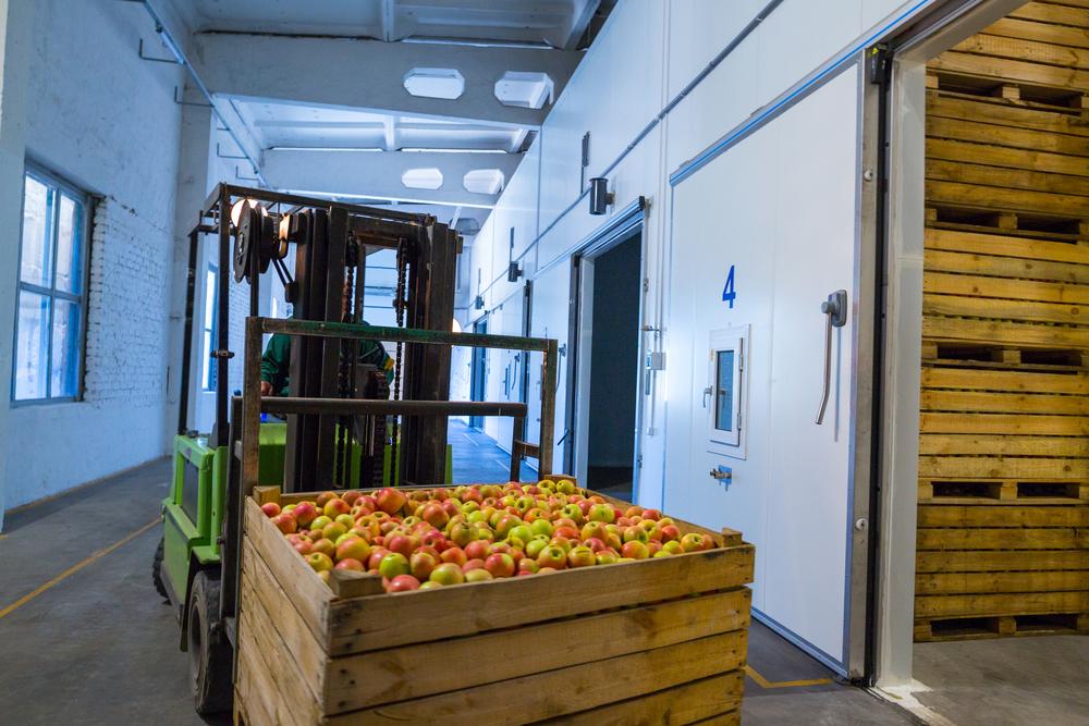 SEQ – Fruit and Vegetable Wholesaler