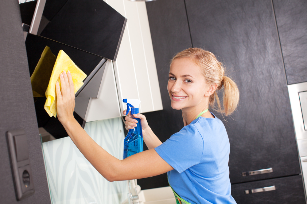 Work from home / Cleaning Business