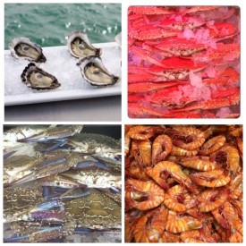 well-established-fresh-seafood-retail-shop-for-sale-perfect-shopping-centre-3