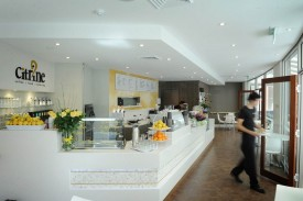 Cafe- Restaurant- Takeaway Available Now- Modern Fit-out - Commercial Quality