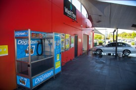 well-established-car-and-dog-wash-for-sale-busy-main-road-location-next-6