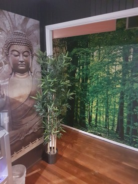 Massage and Day Spa For Sale - Waxing- Facials- Tanning - Prime Location -Classy