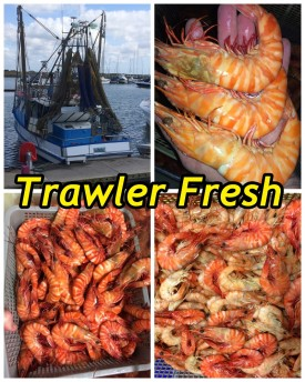 well-established-fresh-seafood-retail-shop-for-sale-perfect-shopping-centre-9