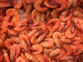 well-established-fresh-seafood-retail-shop-for-sale-perfect-shopping-centre-5