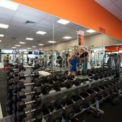 Three Well-Established Gym Franchises For Sale - Prime Gold Coast Locations