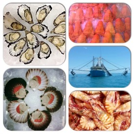 well-established-fresh-seafood-retail-shop-for-sale-perfect-shopping-centre-8