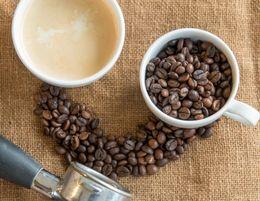 FRANCHISE CAFE - NO COOKING - KOTARA - 00792