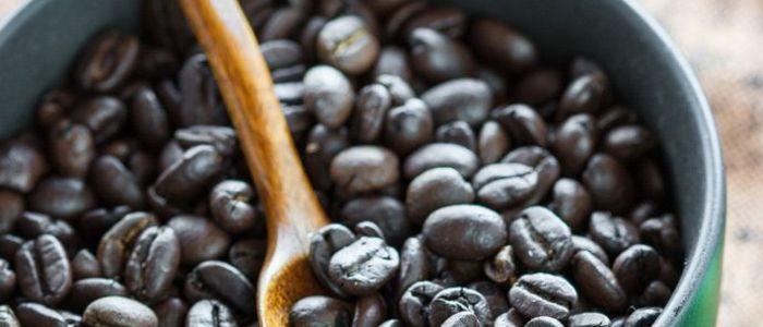 LICENSED CAFE RESTAURANT - RANDWICK - JM0705