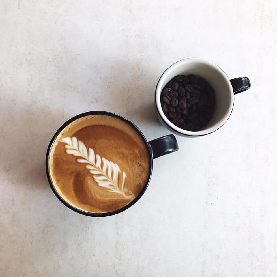 CAFE - NORTH SYDNEY - JM0639
