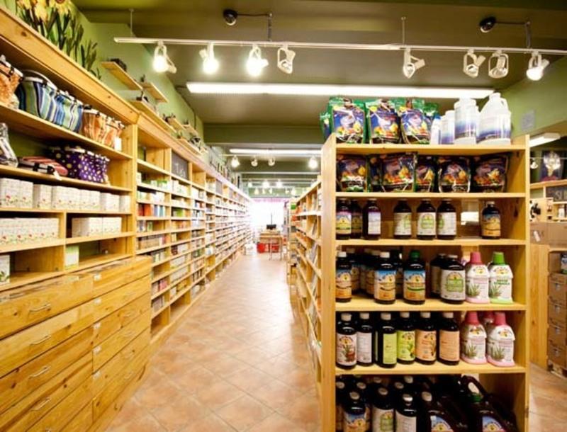 HEALTH FOOD -- CANTERBURY -- #4281561
