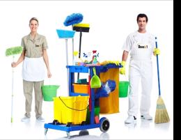 CLEANING -- MELBOURNE -- #5329011