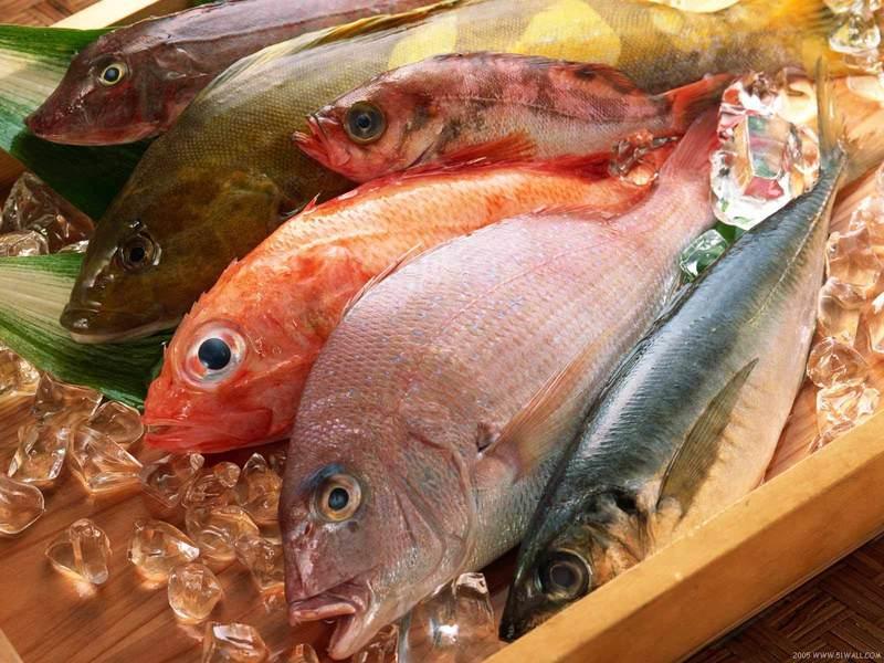 FRESH FISH -- TULLAMARINE -- #4446230