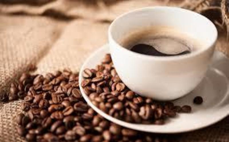 CAFE -- MELBOURNE -- #4229654
