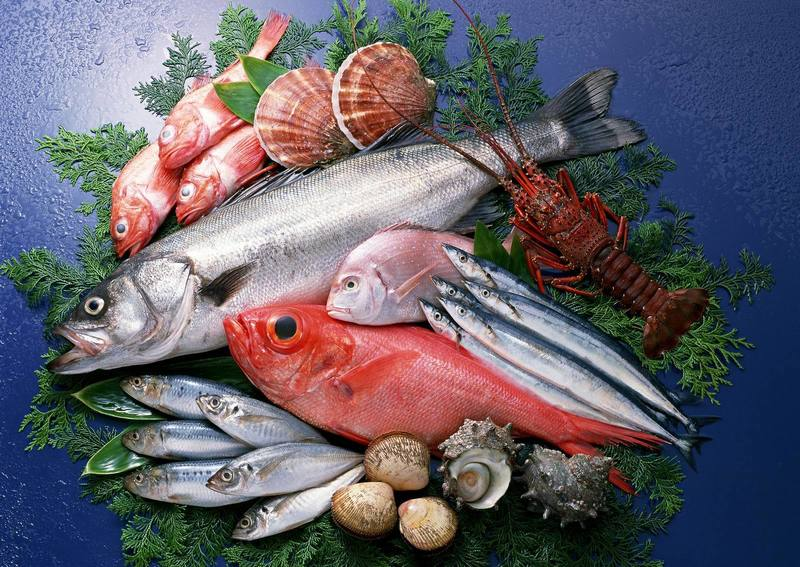 FRESH FISH -- MULGRAVE -- #4276724