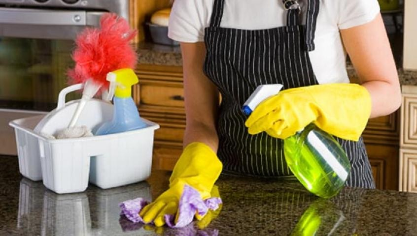 Professional Cleaning Services North Brisbane Business For Sale #3695