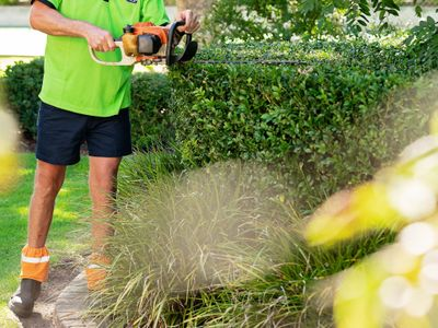 lawn-and-garden-franchise-now-available-in-qld-1