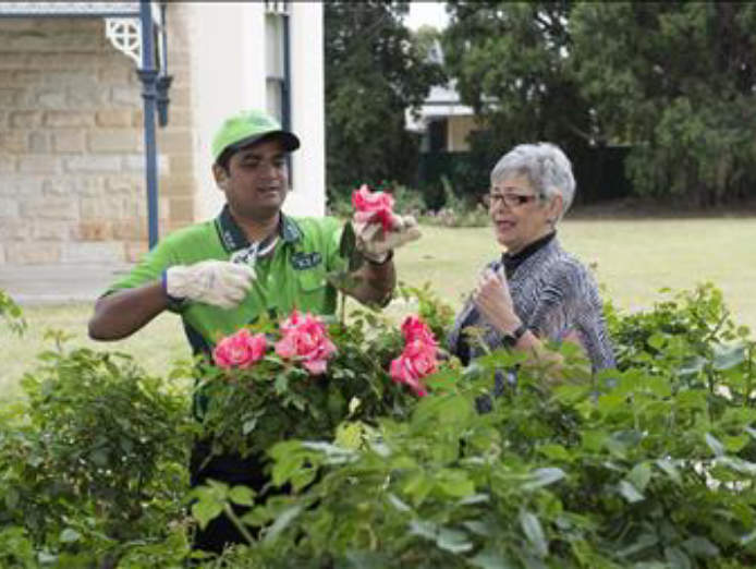 lawn-and-garden-franchise-now-available-in-perth-urgent-must-sell-0
