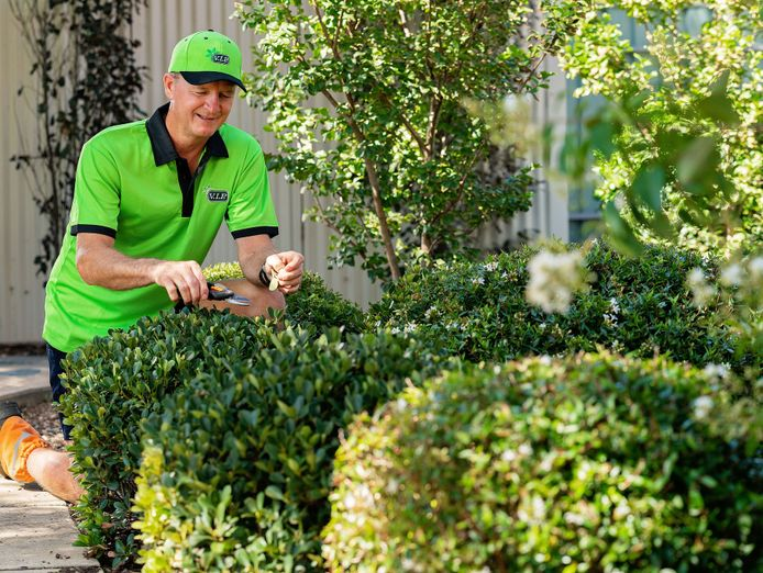 lawn-and-garden-franchise-now-available-in-qld-5