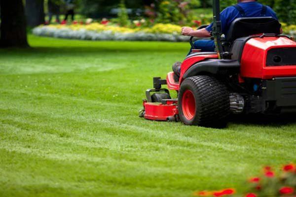 Lawn/Garden/Pruning Service Provider