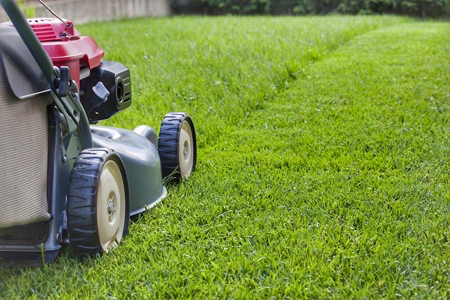 Lawn/Garden/Pruning Service Provider – Ref# 1022671