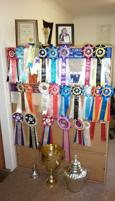 TROPHIES, RIBBONS, SCREEN PRINTING BUSINESS WITH A TWIST - CAN OPERATE FROM HOME