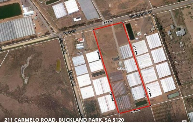 Amazing Value - Residence, 10 acres with 47 Greenhouses all irrigated For Sale
