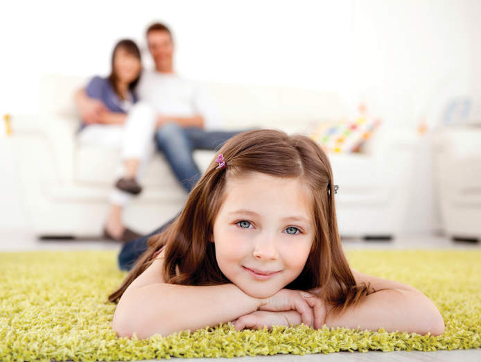 guaranteed-income-with-chem-dry-carpet-cleaning-vendor-financing-available-3