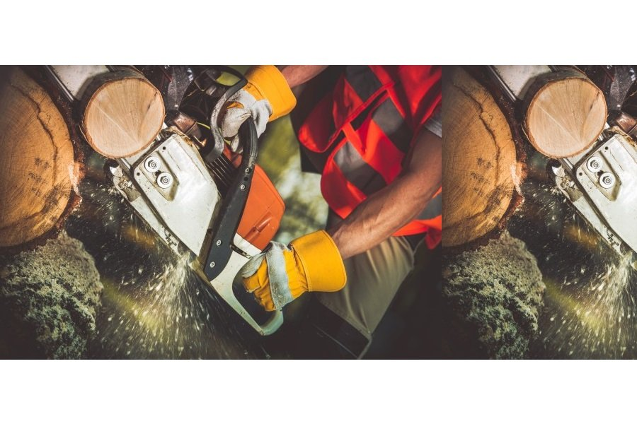 Tree Services Business for Sale Brisbane
