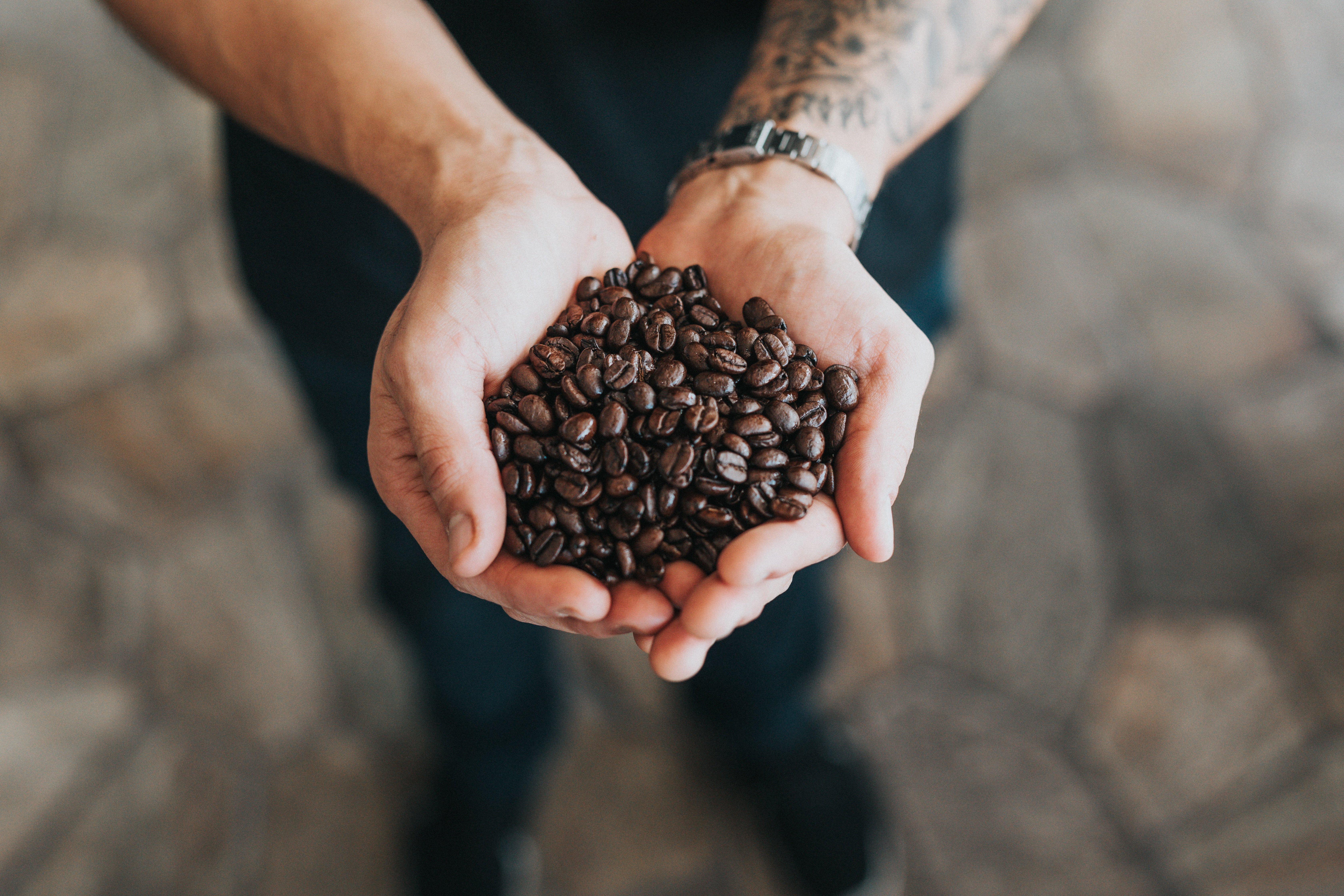 Popular Coffee Franchise for Sale Brisbane